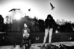 Feeding the birds (Jeroen Helmink) Tags: street leica sun amsterdam birds 35mm photography zwartwit pigeons summicron straatfotografie