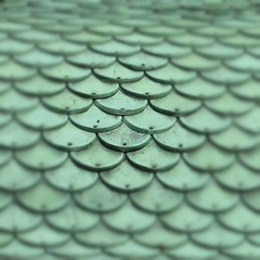 Tile Roof - Folly - Angelsey Abbey - England (unclebobjim) Tags: instantfave tiles green scales nails angelseyabbey macro roof curved oberflächen shockofthenew hypothetical