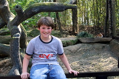 Jacob at the Red Panda (Marlisa Osborne) Tags: zoo jacob