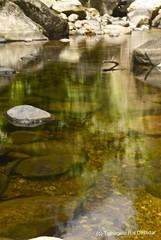 Where time stands still (trdastidar) Tags: shadow india reflection waterfall lowlight nikon stream raw kerala whirlpool rapid wayanad kalpetta meppadi d80 lanternstay