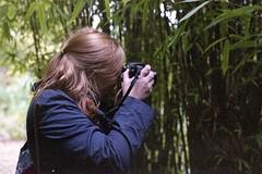 Erica (dichohecho) Tags: trees film leaves analog bamboo analogue pentaxmesuper fujisuperia400 westonbirtarboretum ubuphotosoc roll59 dichohecho