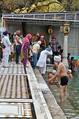 Cleansing (David Basanta) Tags: india punjab amritsar sikhism goldentemple bathers