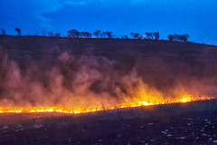 Fire below (Kansas Poetry (Patrick)) Tags: kansas flinthills patrickemerson rangeburning patricknancyforever