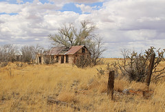 Yeso - Ghost Town? (Helen Orozco) Tags: house newmexico abandoned clouds cacti fence ruin ghosttown posts yeso landofenchantment unlimitedphotos