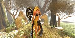 (*~~~Amanda~~~*) Tags: wings whimsy elf zenny