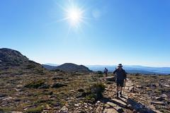 20160424-14-Track to Hartz Peak (Roger T Wong) Tags: people trek outdoors nationalpark path walk australia hike scree tasmania bushwalk tramp 2016 dolerite hartzpeak hartzmountainsnationalpark sony1635 rogertwong sel1635z sonya7ii sonyilce7m2 sonyalpha7ii sonyfe1635mmf4zaosscarlzeissvariotessart