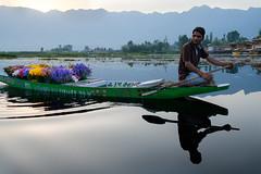 Kashmir Flower seller (Nick Lorkin) Tags: flowers india lake mountains water boat kashmir srinagar flowerseller dallake