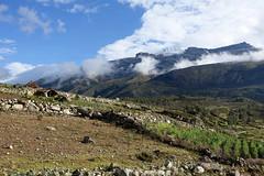 the route to Vicos peak (*Andrea B) Tags: lake peru honda hiking walk january hike glacier blanca valley laguna cordillera huaraz quebrada quebradahonda 2016 cordillerablanca january2016 peruandesguide quebradaruripaccha ruripaccha lagunapaccharuri paccharuri