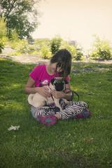 Chloe and Dexter (Deep-Fried Goodness) Tags: dog cute pug dexter