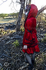 Through the Woods 7465 (JoDi War) Tags: trees sunset red wild nature grass fairytale dark lost blood woods wolf dress boots lace gothic victorian velvet hood storybook rhyme grandmothershouse nurseryrhyme throughthewoods storytale