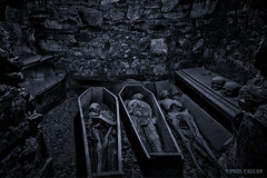 The Mummies of Michans (isitaboutabicycle) Tags: ireland dublin church body mummy corpse mediaeval norse mummification stmichan