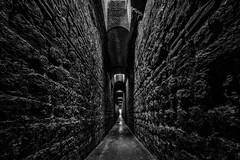 Underground II (Zesk MF) Tags: old bw white black wall dark underground nikon roman under sigma tunnel down 8mm stein trier mauer weltkulturerbe zesk
