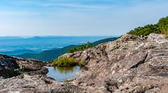 _DSC3597-2 (KewliePhotos) Tags: virginia nationalpark valley shenandoah shenandoahvalley blueridgemountains shenandoahnationalpark