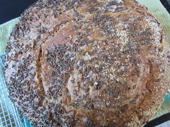 Biggest Bread Surface (Plant Design Online) Tags: bread baking starter rye biology sourdough gluten starch enzymes caraway noknead