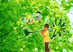 GO GREEN...SAVE TREES (15) (Go Green Kids...) Tags: india prince khammam andhrapradesh savewater gogreen savetrees natureimages stopglobalwarming saveearth saveplants naturewallpapers naturequotes manuguru treepoems naturepoems gogreenkids princesundarrao newpaloncha gogreenearth avoidplastic gogreenwallpapers gogreenprince gogreenphotography raregogreenimages saveplantspoems gogreenquotes
