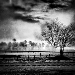 Fog in the Sunrise. (josh.hofer) Tags: camera blackandwhite bw white black texture apple fog sunrise square four airport aviation 4 shift scratches parkway crop tilt gen squarecrop rdu iphone tiltshift taptaptap pkwy rduairport dynamiclight iphone4 aviationparkway iphoneography picfx tiltshiftgen cameraplus iphonefour instagram igersraleigh aviationpkwy