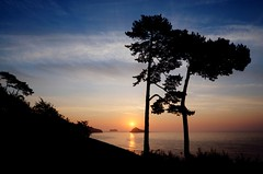 Misty Sunrise at Meadfoot Beach - Getty Images (rosyrosie2009) Tags: uk trees sea england seascape beach water beautiful silhouette landscape photography coast nikon rocks flickr photos devon torquay hdr gettyimages westcountry coastpath torbay photomatix meadfootbeach tonemapped devonandcornwall thatcherrock d5000 rosiesphotos nikond5000 tamronspaf1024mmf3545diiildasphericalif rosiespooner rosyrosie2009 rosemaryspooner rosiespoonerphotography