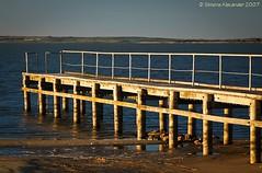 Meningie - Lake Albert (simone_a13) Tags: sunset lake water jetty australia southaustralia