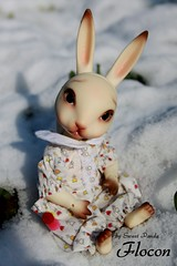 Flocon (Sweet Panda) Tags: snow rabbit bunny animal bjd dollzone