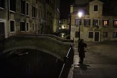 Venice 3668