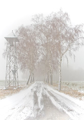 Am Ende des Weges I (O.I.S.) Tags: road schnee trees winter friedhof white snow cold ice graveyard canon eos frost sad bell path sigma schild signpost kalt eis bume trist weg glocke 30d wegweiser traurig 1530 weis strase