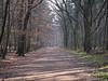Herbst/Frühling 23.03.2012