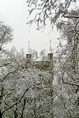 tower (overthemoon) Tags: trees winter snow film church cemetery schweiz switzerland suisse spires stmartin neige svizzera turrets vevey cimetière vaud romandie notblackandwhite imagepoésie finestyle