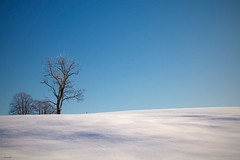 Haut Jura Francais (Arnaud D...) Tags: winter mountain snow france nature montagne canon french landscape ciel jura neige paysage minimalist snowscape hover blusky lapesse cielbleu llens minimalistlandscape 550d sriel hautjura paysagehivernal borderfx