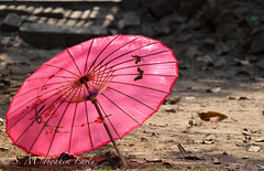 """umbrella • <a style=""""font-size:0.8em;"""" href=""""http://www.flickr.com/photos/38585027@N00/6895207061/"""" target=""""_blank"""">View on Flickr</a>"""