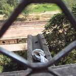 "Dirty Diaper at the Agra Fort <a style=""margin-left:10px; font-size:0.8em;"" href=""http://www.flickr.com/photos/14315427@N00/6924658997/"" target=""_blank"">@flickr</a>"