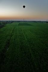 Fields and balloon (sonofwalrus) Tags: africa slr sunrise canon dawn balloon flight egypt middleeast aerial fields hotairballoon crops luxor  eos400d
