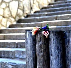 left for you (dimitra_milaiou) Tags: world life wood flowers light color detail love nature beautiful beauty stone stairs walking square greek design wooden still nikon europe poetry day shadows bokeh earth d live