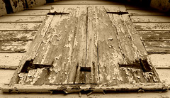 Chippy Door in St. Michaels, MD (Shelly Baker Redden (catching up)) Tags: door sepia rust paint shed hinges stmichaelsmd chippingpaint