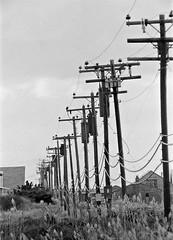 Fire Island poles (en tee gee) Tags: newyork transformer longisland wires poles lilco 4kv
