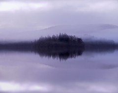 whispering pines (explore) (kenny barker) Tags: trees winter mist reflection nature water fog lumix scotland day pines loch trossachs tistheseason lochard kinlochard landscapeuk panasoniclumixgf1 welcomeuk kennybarker