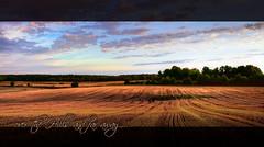 Over the hills and far away (Marian_Heinzmann) Tags: sunset panorama nature clouds canon germany deutschland evening colours natur felder wanderlust hills fields brandenburg hügel fernweh