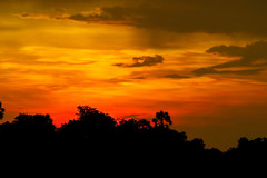 Sunset in Africa (L F Ramos-Reyes) Tags: africa travel trees sunset sky sun mountains clouds dusk zimbabwe zambia goldenhour lionfrr mygearandme