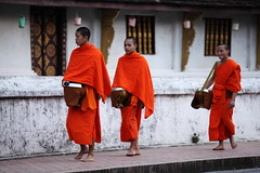 Alms (Lachlan Towart) Tags: travel orange temple asia buddhist monk buddhism monks laos luangprabang robes alms