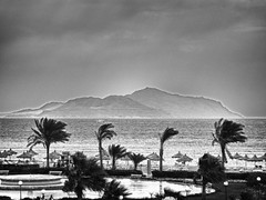 A dust storm coming to Tiran island (Maine Surfer) Tags: ocean red sea vacation blackandwhite storm tree fountain coral sand wind egypt sharmelsheikh el palm dust sheikh hurgada sinai shar tiran   egypet