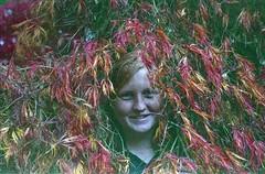 Erica (dichohecho) Tags: trees film leaves analog analogue pentaxmesuper fujisuperia400 westonbirtarboretum ubuphotosoc roll59 dichohecho
