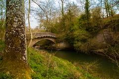 Bow Bridge (eddie_austrums) Tags: teme bowbridge downtongorge