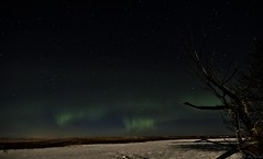 Just a hint of green (hey ~ it's me lea) Tags: longexposure nightphotography winter sky night stars alberta hdr northernlights auroraborealis hintofgreen starrysky northofcalgary
