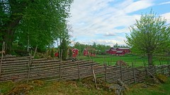 Vrt gemensamma arv. (LellePelle) Tags: by fence village meadow culture ker falurd ng falured odla grdesgrd kulturhistoria kulturarv cultureheritage