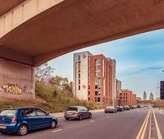 Victoria Hall in #Birmingham. #students @unibirmingham #visitbirmingham #visitbritain #cityscape #igers #igersuk #igersbirmingham #potd #photooftheday @birmingham.city @birmingham.life @ilovebrum.info #uk #unitedkingdom @photosocuob @unibirmingham #hellob (atomikkingdom) Tags: square squareformat iphoneography instagramapp uploaded:by=instagram