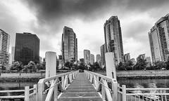 Vancouver (laird.lothar) Tags: city blackandwhite canada skyline vancouver buildings metropole wolkenkratzer hochhuser westcanada