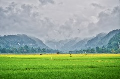 22_20160315-171404-_DSC5349_HDR (trueforever) Tags: indonesia ibis bukittinggi padang novotel pagaruyung minangkabau jamgadang lembahharau westsumatera batusangkar tanahdatar ngaraisianok padangpanjang pacujawi padangpariaman