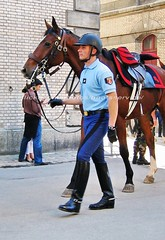 bootsservice 07 9136 (bootsservice) Tags: horse paris army cheval spurs uniform boots military cavalier uniforms rider cavalry militaire weston bottes riders arme uniforme gendarme cavaliers equitation gendarmerie cavalerie uniformes eperons garde rpublicaine ridingboots