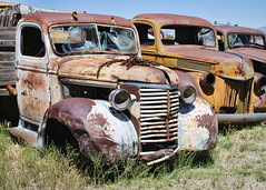 143/366 Seventh Heaven (Helen Orozco) Tags: newmexico ford rust chevy wreck moriarty 2016366 lewiscarandtoymuseum