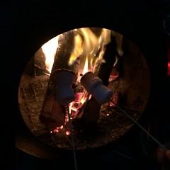 Toasting marshmallows (Snowfairy) Tags: devon tipi branscombe coombeviewfarm