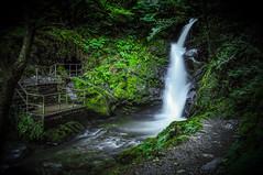 Dolgoch Falls (Celtic-Wanderer) Tags: waterfall river stream watercourse movingwater slowshutter longexposure landscape dolgoch doglegfalls wales outdoors nikon d5000 midwales gwynedd